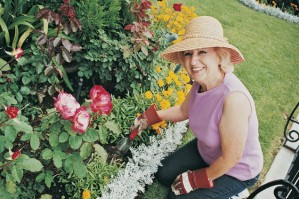 Seven Steps to Avoid Back Pain when Gardening